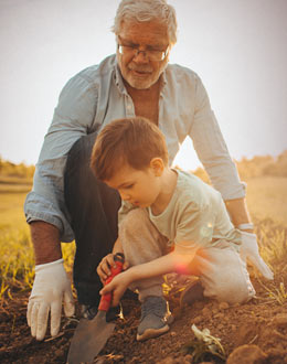 a boy with his grandfather planting in chicago illinois